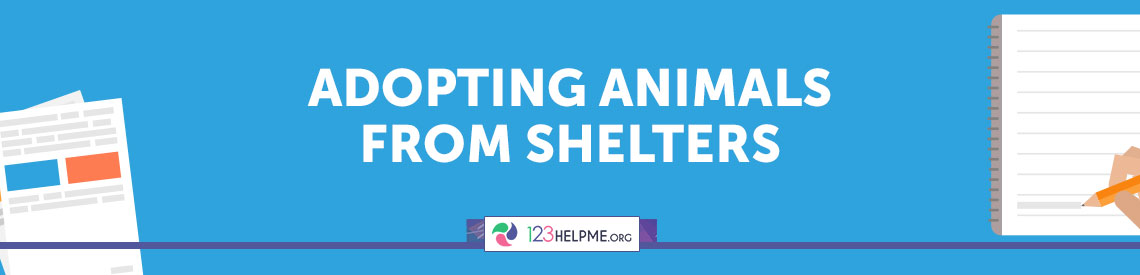 adopting animals from shelters